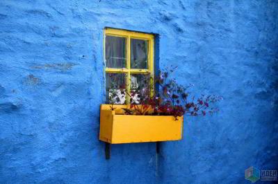 Красота изнутри и снаружи: как устроить цветник за окном
