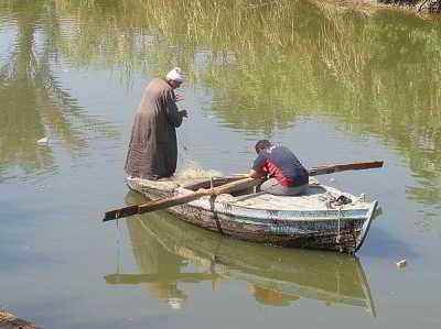 Плыла по Нилу фелюга