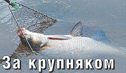 За крупной рыбой на малые реки